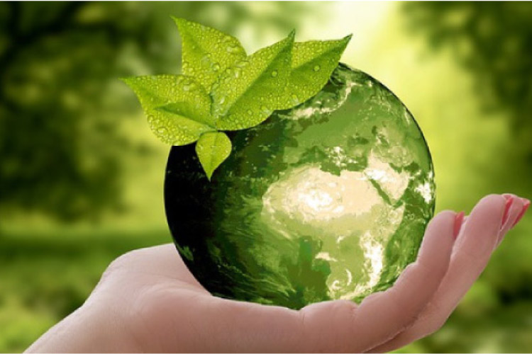 hand holding a small green world