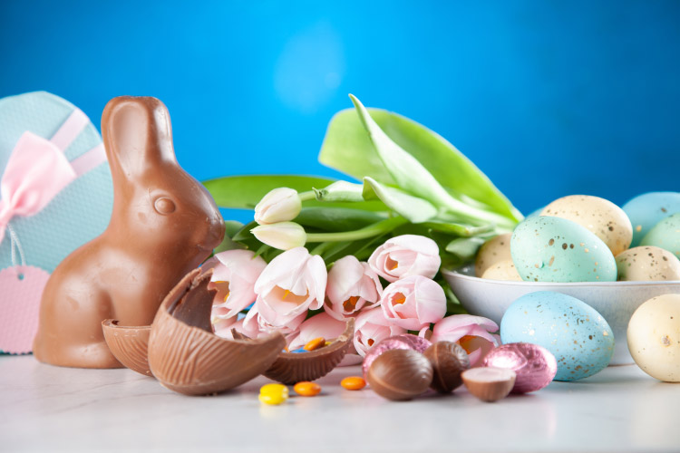 chocolate bunny and eggs with tulips
