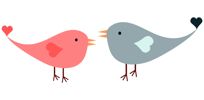 A pink graphic design lovebird facing a grey one and has a heart shaped wing and a little heart at the end of their tails